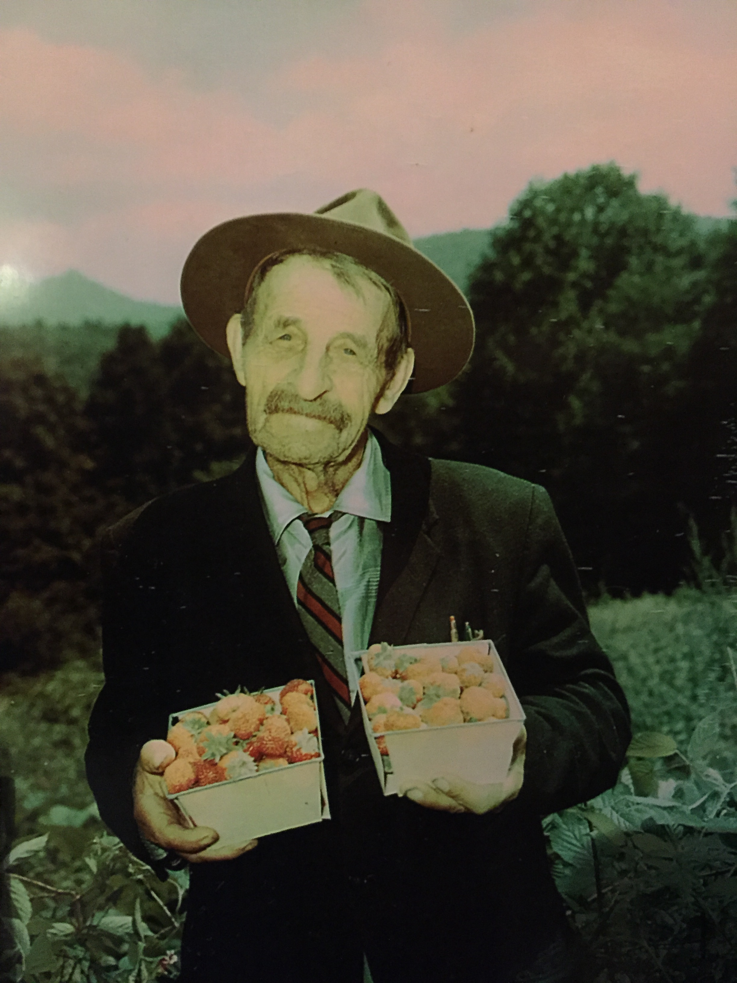 Joe Larkin Hartley with his prize-winning strawberries. Photo by Hugh Morton, found in the Hugh Morton Photographs and Films #P0081, copyright 1950s, North Carolina Collection, University of North Carolina at Chapel Hill Library.